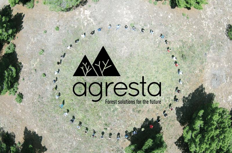 Agresta: nuevo branding y nueva web para un nuevo plan estratégico