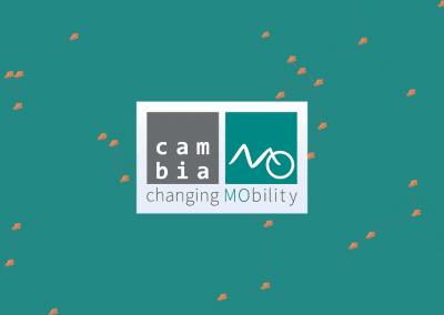 Ser y parecer innovadores: cambiamo.net